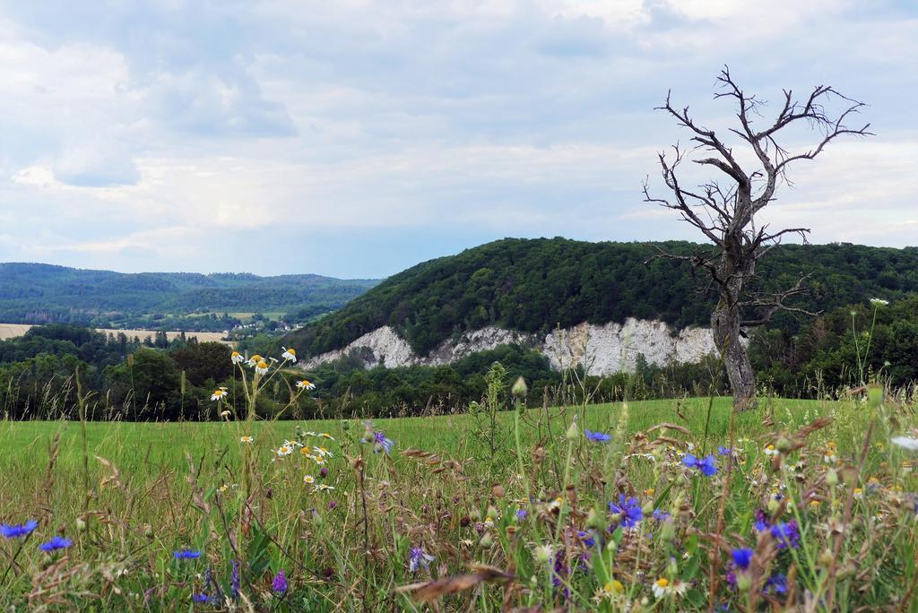 Himmelsberg bei Woffleben