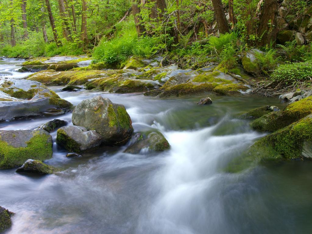 Der Fluss Sormitz mäandert durch die Wälder des Thüringer Schiefergebirges(© K, Fischer)