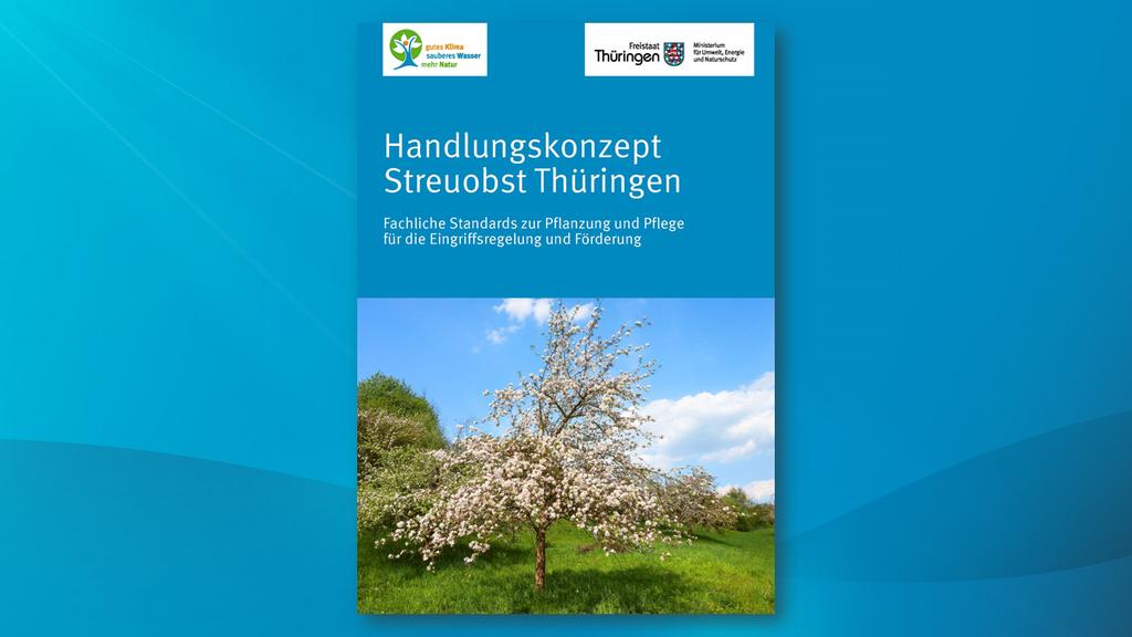 Titelblatt des Handlungskonzeptes Streuobstwiesen mit dem Foto eines blühenden Obstbaumes